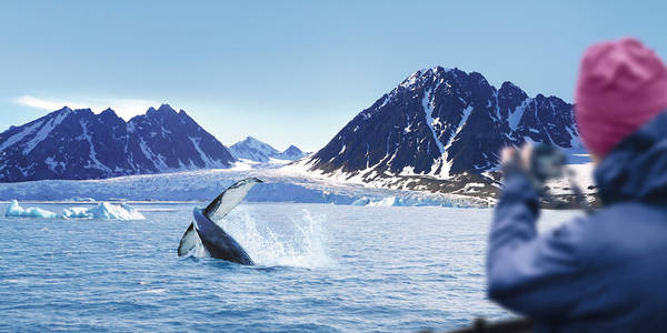 All arctic & antarctic cruises