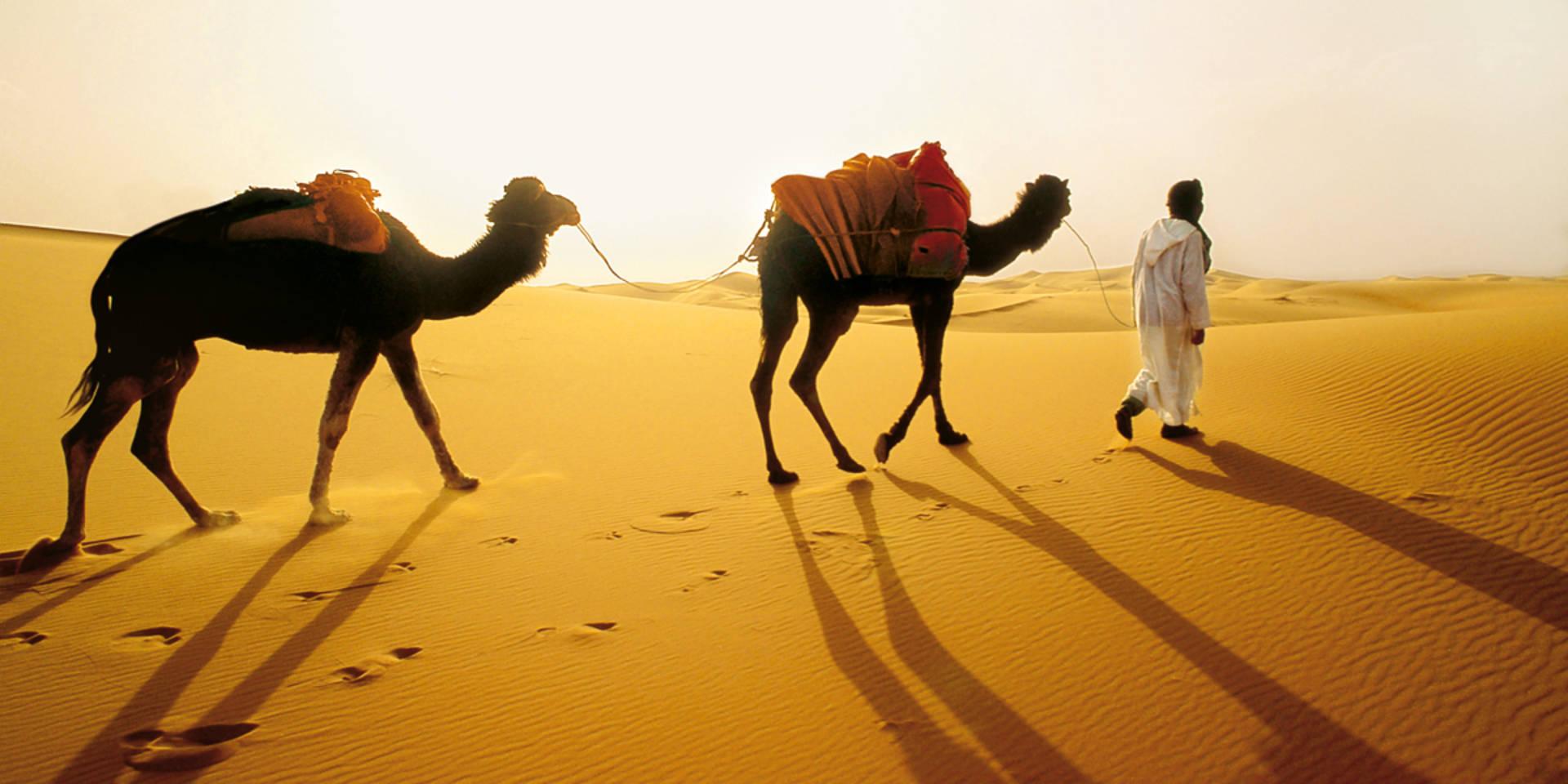Kreuzfahrten Naher Osten