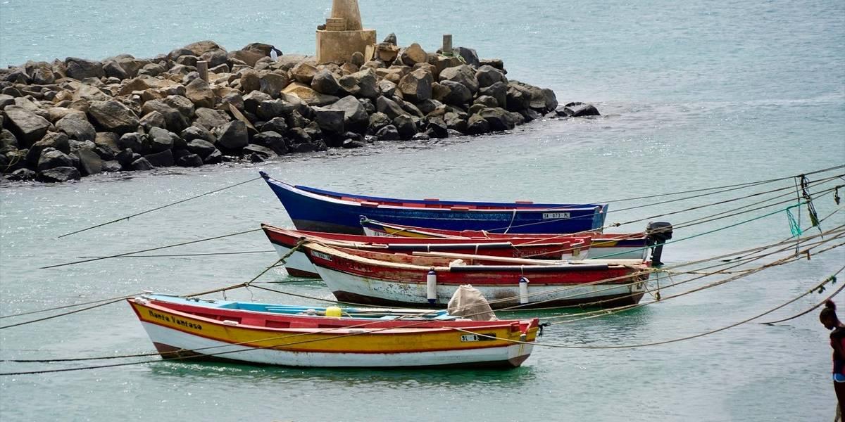 Dating tote Meeresschollen Die Hakenkreuz-Kuhfischerei