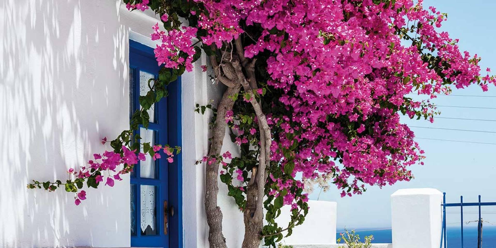 Neue Reisen Juni/Juli 2021 - Griechenland