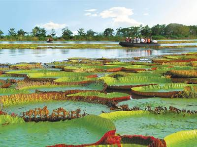 Amazonas Kreuzfahrt: Mittel-Südamerika