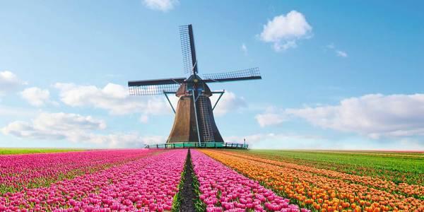 HANSEATIC spirit - Frühjahrsreisen