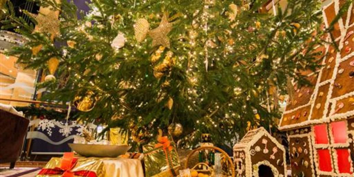 Weihnachten auf See: Wie der Christbaum an Bord kommt - Hapag-Lloyd ...