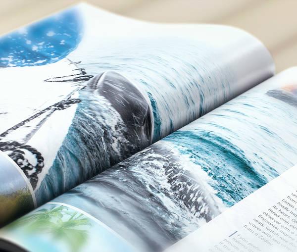 Catalogues from Hapag-Lloyd Cruises