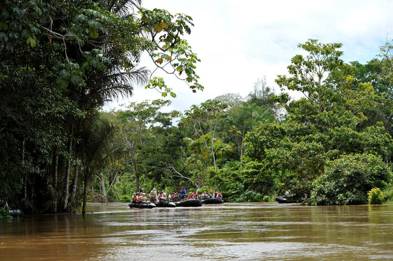 Amazonas4_01
