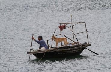 De Fischer und sine Hund (Copy)