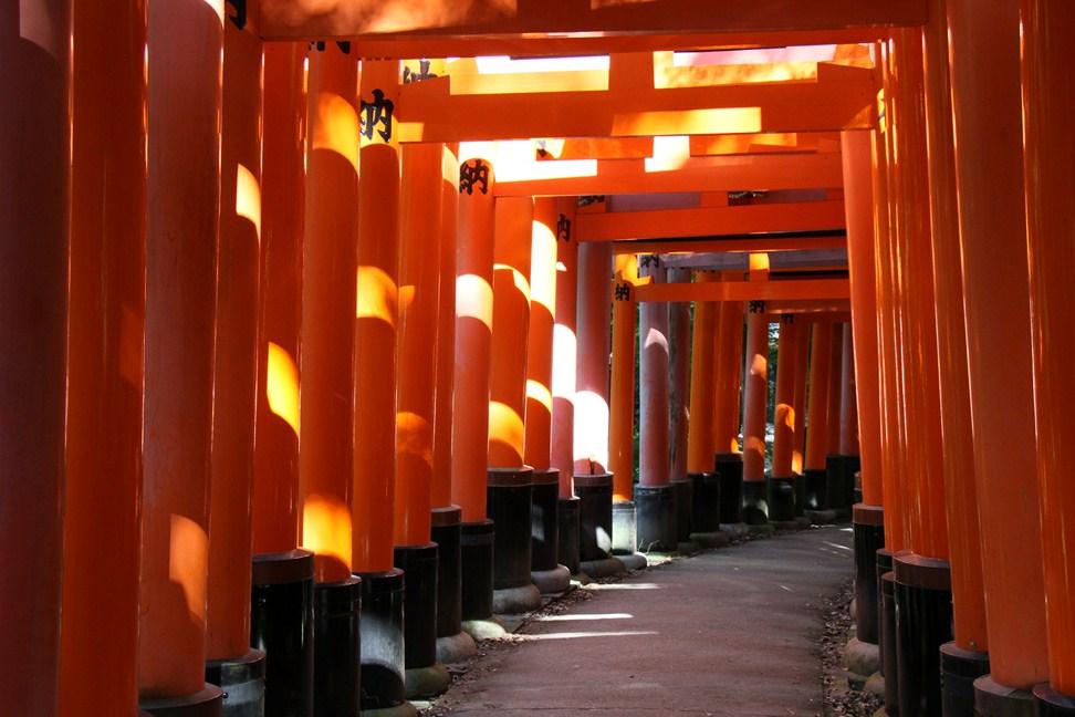Fushimi Inari V