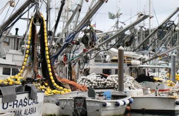 Hafen von Kodiak (Copy)