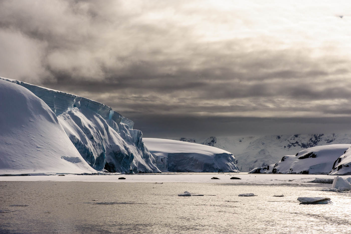 Antarktis 2011: Melchior Island.