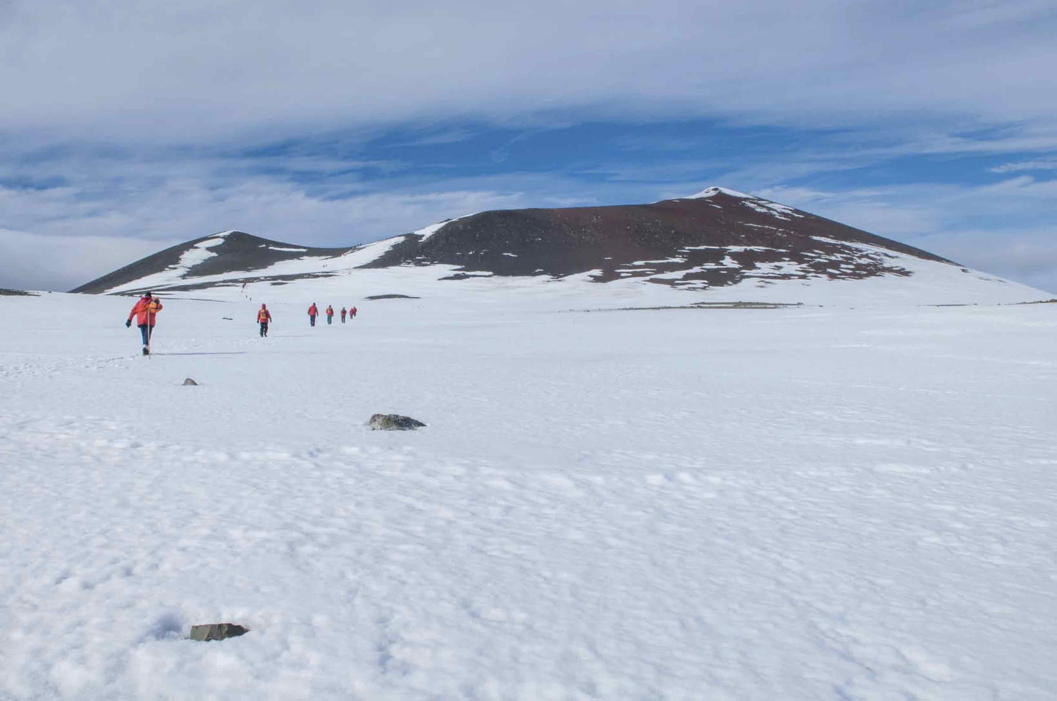 Penguin_Island