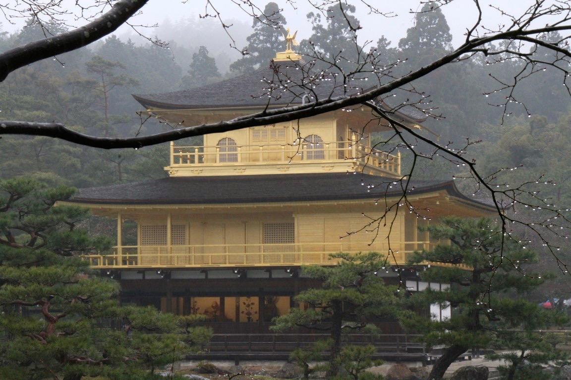 02 Regentropfen vor dem goldenen Tempel