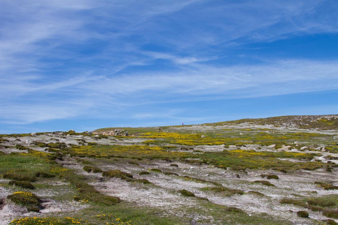 Hochfläche von Tory Island