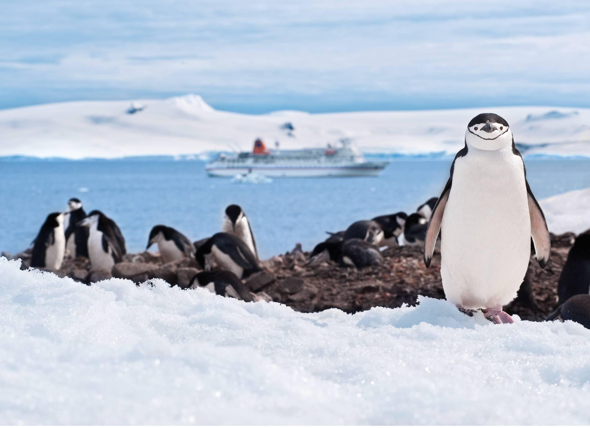 HL_OCV2_jaek_4245_antarktis2011