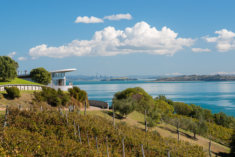 H233-Waiheke-Island-Auckland-Julian-Apse-2