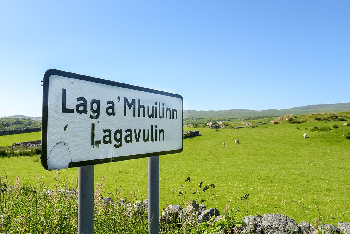 Lagavulin (Islay) (15)