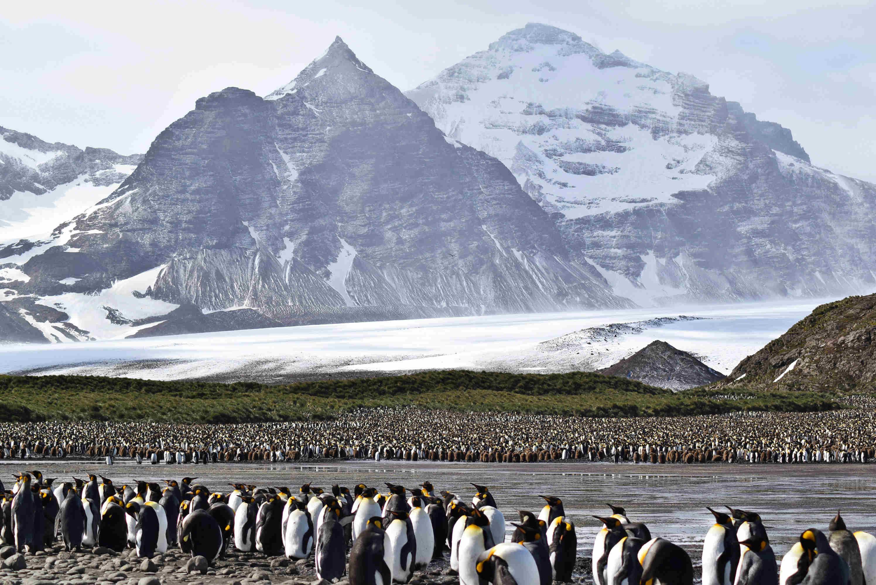 Antarktis1
