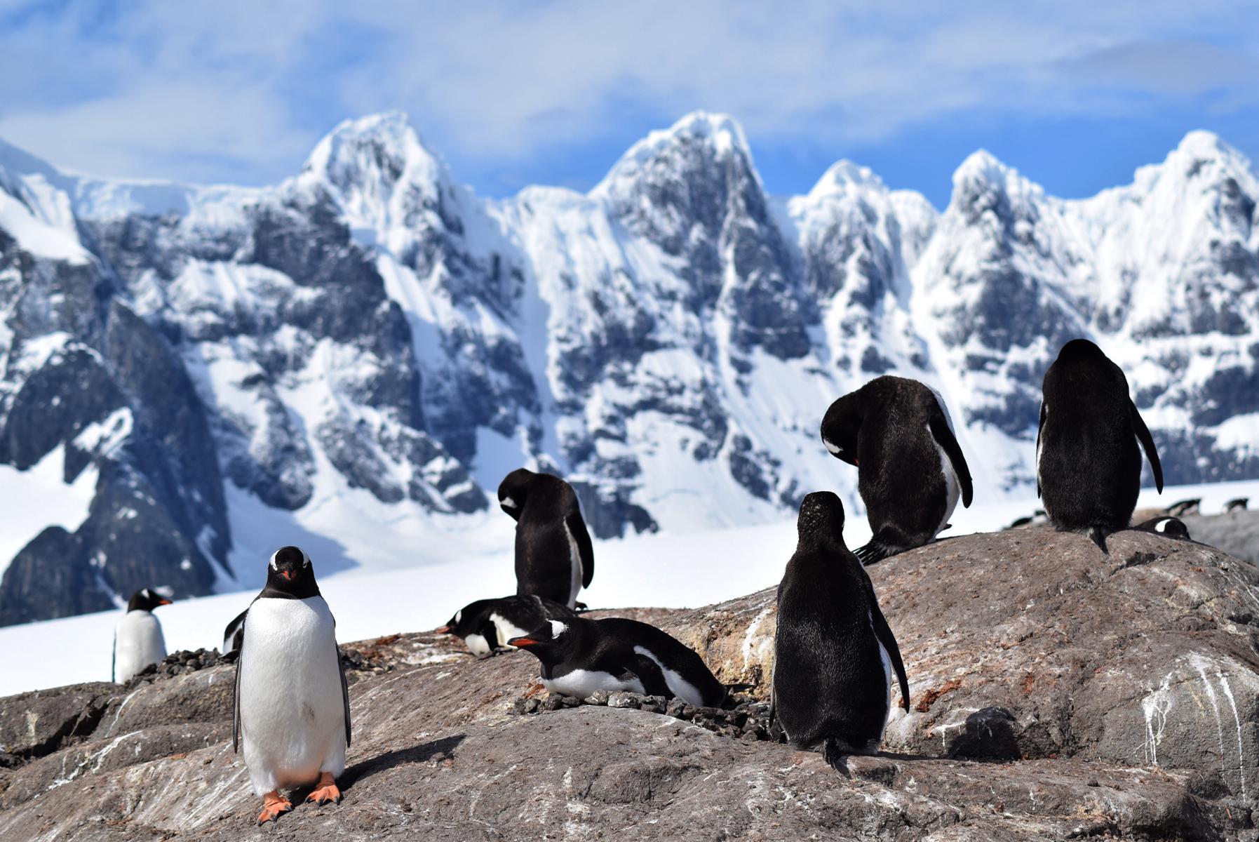 Antarktis5