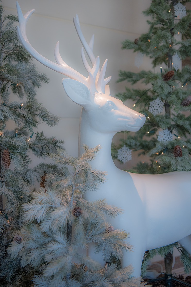 Christmas_Hirsch