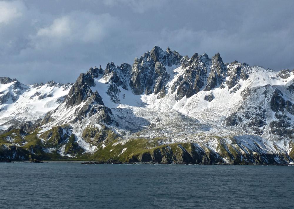 Koenigspinguine-Kertelhein-Antarktis-9