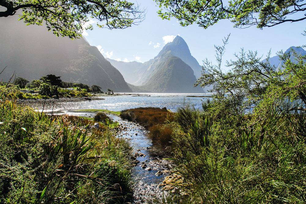 Milford Sound, Fjordland-Nationalpark, Neuseeland / Milford Soun