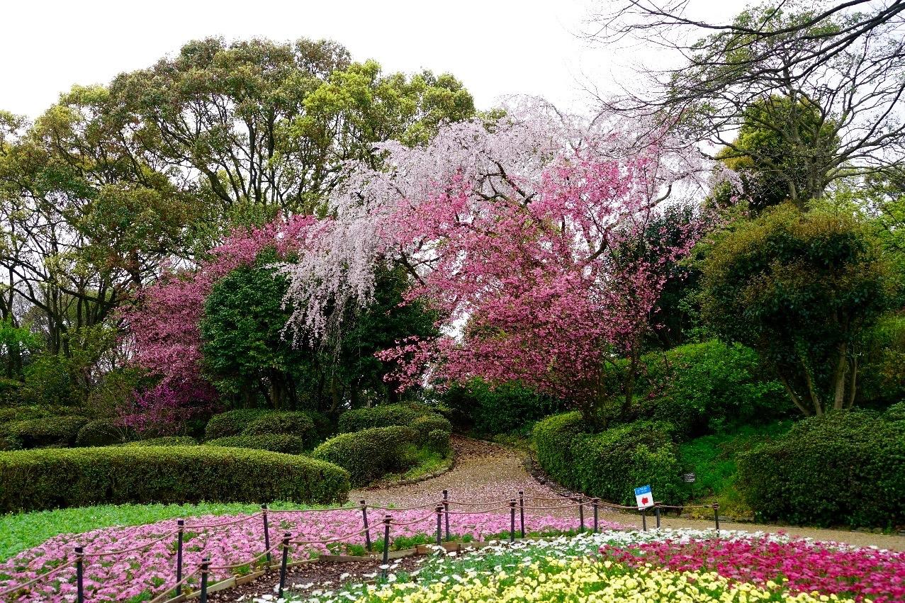 Botanischer Garten in Fukuoka