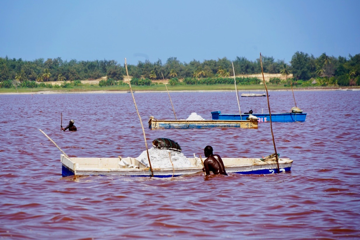Senegal Lac Rose