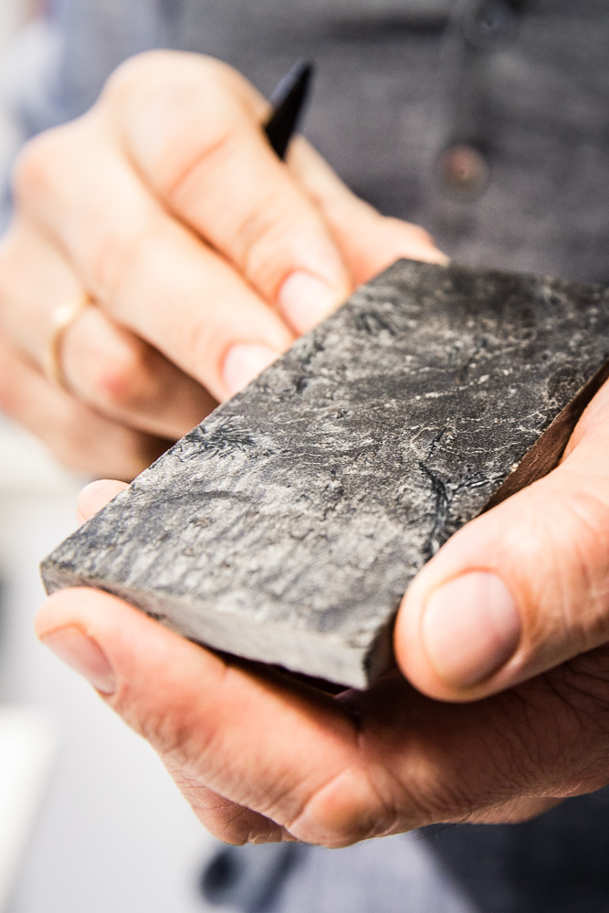 Ocean-Architects-Expeditionsneubauten-HL-C-57