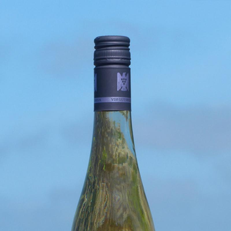 Wein-Sansibar