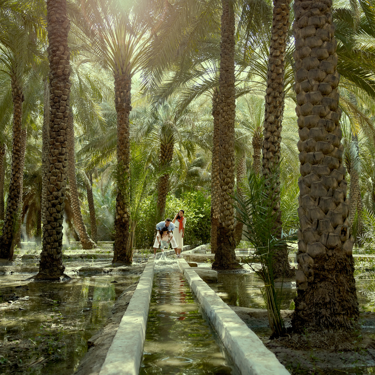 i13 Al AinOasis
